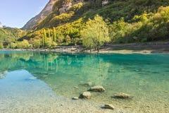 Lac vert avec de l'eau transparent Photos libres de droits