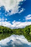 Lac vert avec la forêt tropicale verte et nuage blanc sur la SK bleue photographie stock