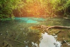 Lac vert dans la forêt tropicale profonde Images stock