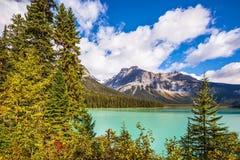 Lac vert magique entouré par la forêt Photo stock