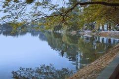 Lac, Vietnam, hiver, beau, la vie, streetlife Photo libre de droits