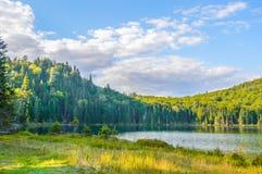 Lac w Mont-Tremblant parku narodowym Zdjęcia Stock