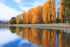 Lac Wanaka, île du sud Nouvelle-Zélande photos libres de droits