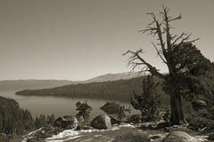 Lac wilderness de sépia Photos stock