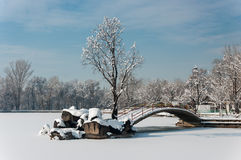 Lac winter Photo libre de droits