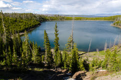 Lac Yellowstone Images libres de droits