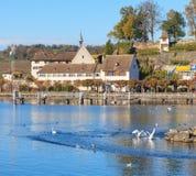 Lac Zurich dans Rapperswil Photographie stock libre de droits