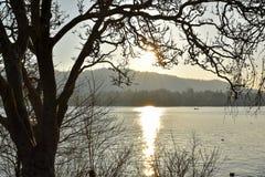 Lac zurich - Suisse Photographie stock