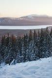 Lac Zyuratkul, paysage de coucher du soleil d'hiver Forêt Photo stock