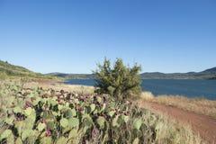 Laca du Salagou em França Foto de Stock Royalty Free