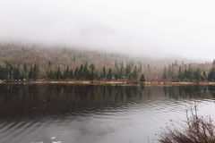 Laca e floresta surpreendentes da vista imagens de stock royalty free