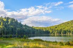 Laca en el parque nacional de Mont-Tremblant Foto de archivo