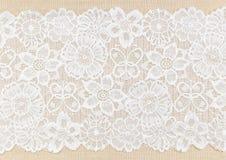 lace royaltyfri foto