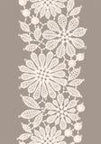 lace Arkivfoton