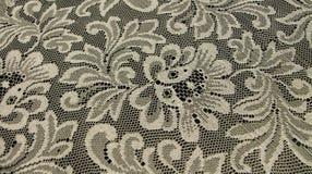 lace Royaltyfri Fotografi