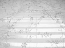 Lace Abstract Pattern 5. High-key abstract white lace curtain on white blinds background (high-resolution photo royalty free stock photography