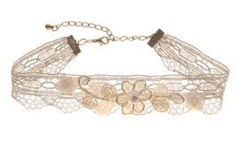 Lace  adornment is  for the neck. Stock Images