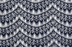 Lace background. Background with dark blue lace texture on white Stock Photo