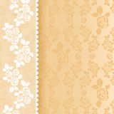 Lace beige square Royalty Free Stock Image