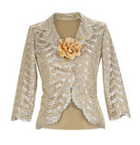 Lace blouse Royalty Free Stock Images