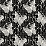 Lace with butterflies Royalty Free Stock Photos