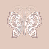 Lace butterfly Royalty Free Stock Images