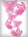 Lace butterfly background Royalty Free Stock Image