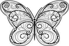 Lace butterfly  beauty Royalty Free Stock Images