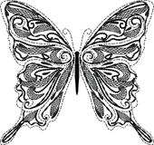 Lace butterfly vector Royalty Free Stock Image