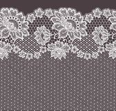 Lace card. Brown Backgrounds. Royalty Free Stock Photography