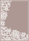 Lace Card. Stock Image