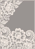 Lace corner. Card. Royalty Free Stock Images