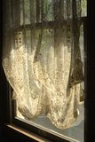 Lace Curtains in Window. Lace curtains hanging on a sunlit window royalty free stock photo