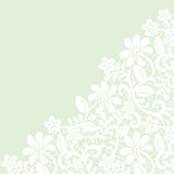 Lace fabric background. Template for wedding, invitation or greeting card with lace fabric background Stock Photos