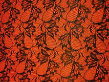 Lace fabric royalty free stock photography