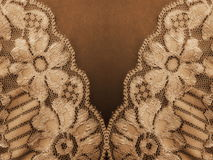 Lace fabric texture Stock Images