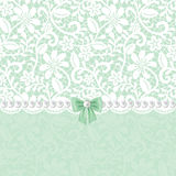 Lace floral frame Royalty Free Stock Images