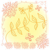 Lace floral pattern Stock Photography