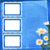 Lace frames with bunch. Of flower on the blue background Stock Images