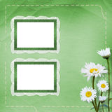 Lace frames with bunch of flower Royalty Free Stock Photo