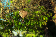 Lace heart hanging on a tree branch on green leaves background on a sunny day, foliage and blue sky blurred,St. Valentine`s Royalty Free Stock Image