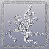 Lace illustration with Amur Stock Photography