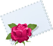 Lace napkin and rose Stock Photography
