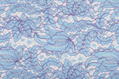 Lace pale blue Royalty Free Stock Photos