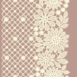 Lace. Stock Images