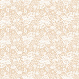 Lace pattern Stock Photography