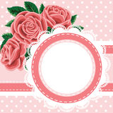lace and roses Stock Photos