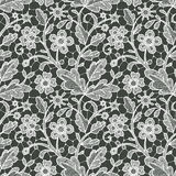 Lace Seamless Floral Pattern. Royalty Free Stock Image