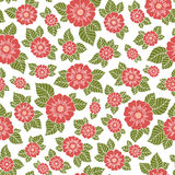 Lace seamless hand drawn vector pattern. Royalty Free Stock Photo