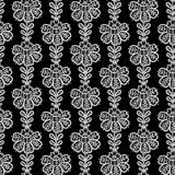 Lace seamless pattern with flowers. Royalty Free Stock Images